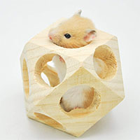 Best Hamster Chew Toys Niteangel Wooden Interactive Toy Ball for Small Animals