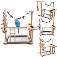 Best Bird Play Stands QBLEEV Parrots Bird Wooden Playground with Wood Perch