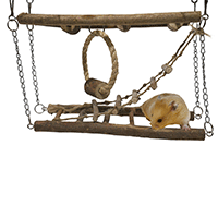 Rosewood-Pet-Activity-Suspension-Bridge---Hamster-&-Small-Animal-Toy